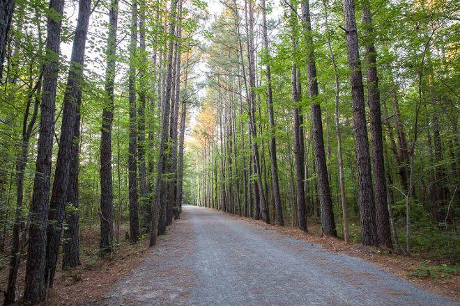 American Tobacco Trail, Apex, United States