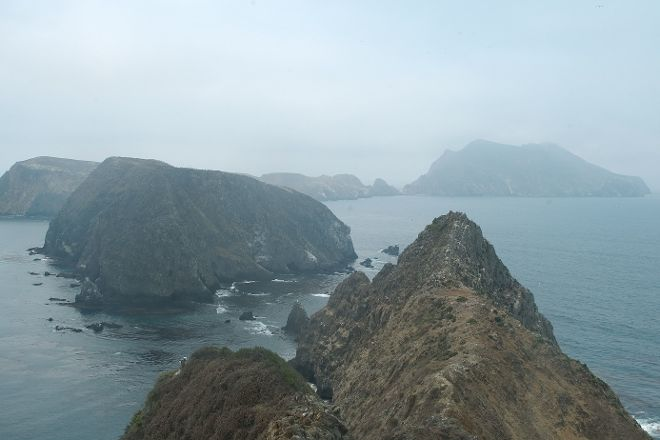 Anacapa Island, Channel Islands National Park, United States