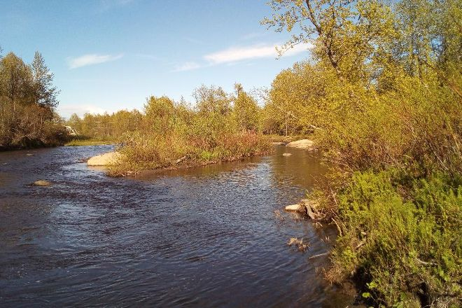 Anchor River State Recreation Area, Anchor Point, United States