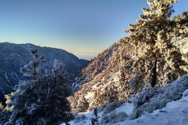 Angeles National Forest, Arcadia, United States