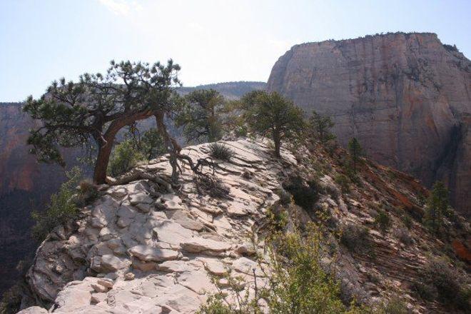 Angel's Landing, Zion National Park, United States