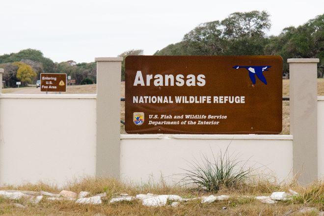 Aransas National Wildlife Refuge, Austwell, United States