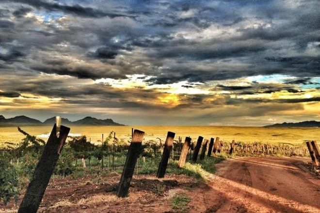 Arizona Hops and Vines, Sonoita, United States