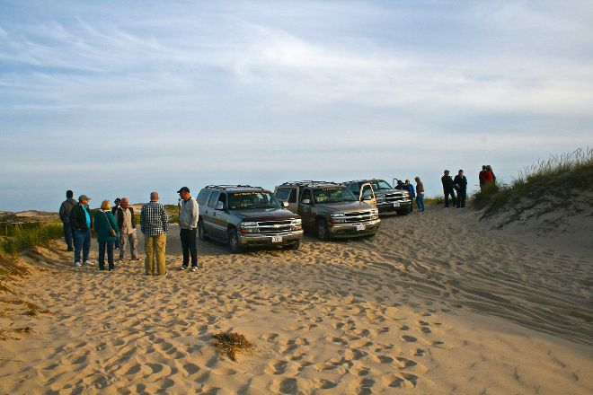Art's Dune Tours, Provincetown, United States