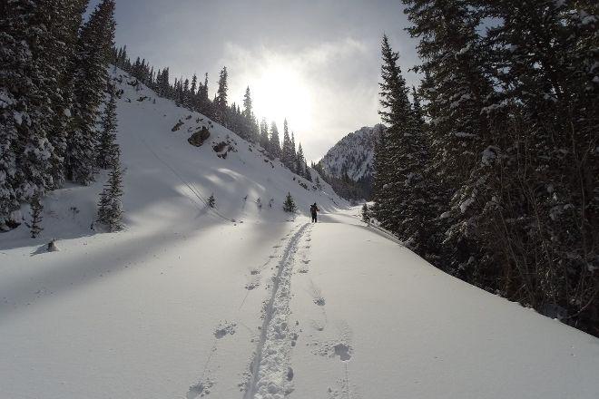 Aspen Alpine Guides, Aspen, United States