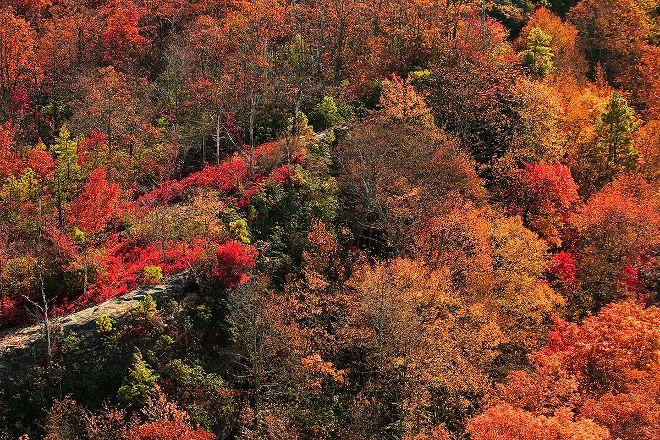Bad Branch State Nature Preserve, Whitesburg, United States