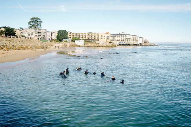 Bamboo Reef Scuba Diving Centers, Monterey, United States
