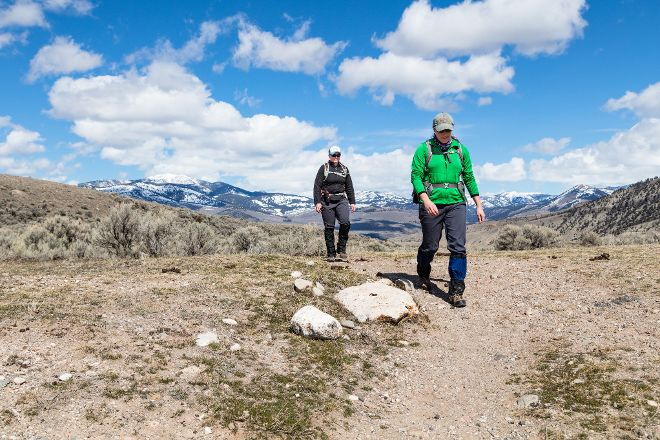 Beaver Ponds Loop Trail, Yellowstone National Park, United States