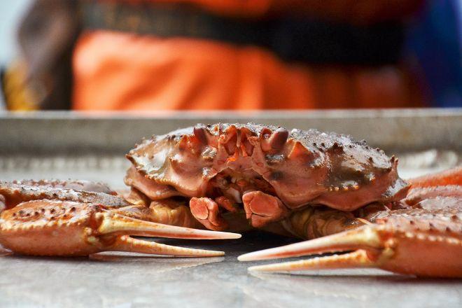 Bering Sea Crab Fishermen's Tour, Ketchikan, United States