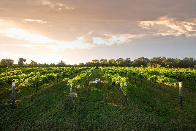 Bernhardt Winery, Plantersville, United States