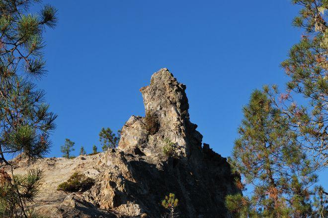Big Basin Redwoods State Park, Boulder Creek, United States