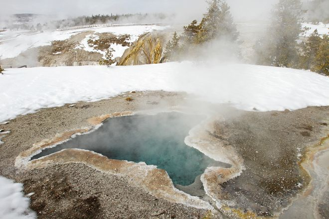 Blue Star Spring, Yellowstone National Park, United States