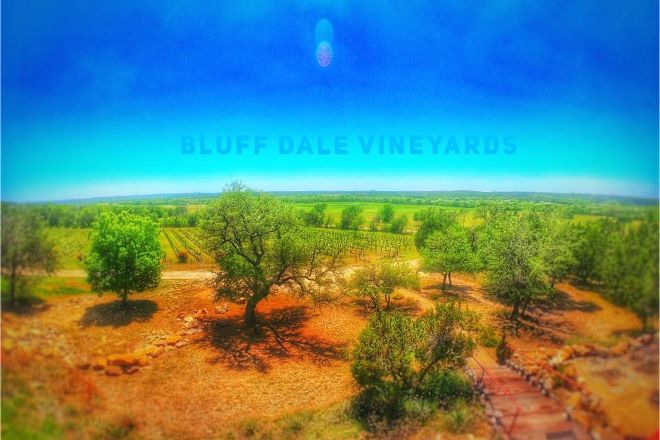 Bluff Dale Vineyards, Bluff Dale, United States