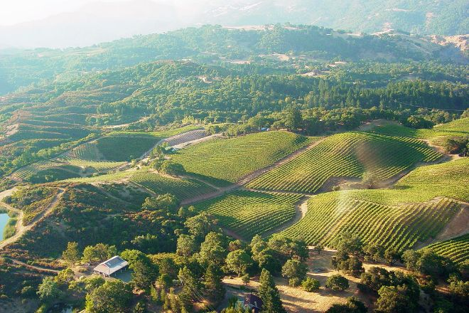 BobDog Winery and SkyPine Vineyards, Cloverdale, United States