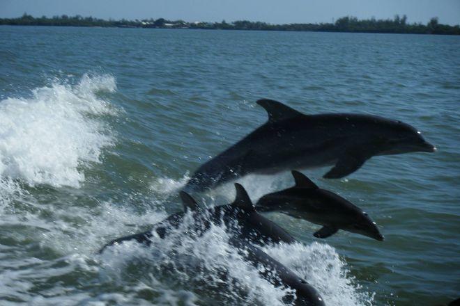 Boca Boat Cruises, Boca Grande, United States