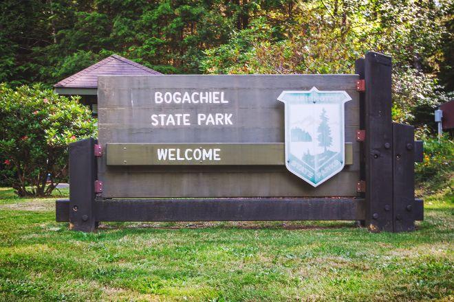 Bogachiel State Park, Forks, United States