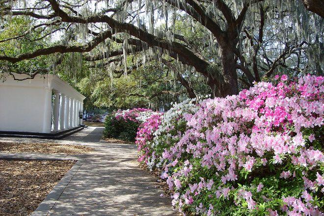 Bonnie Blue Walking Tours of Savannah, Savannah, United States