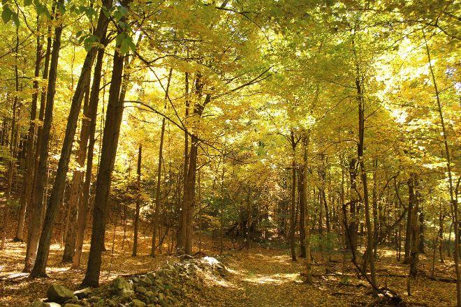 Borden's Pond Conservation Area, Ghent, United States