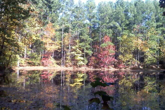 Bowie Nature Park, Fairview, United States