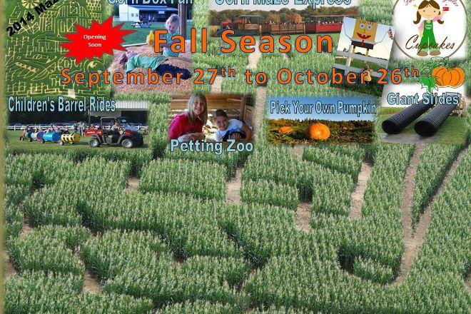 Bowles Farm Corn Maze, Clements, United States