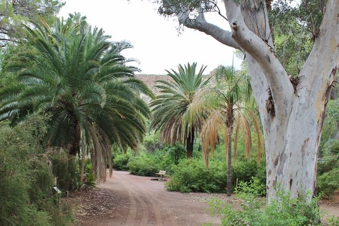 Boyce Thompson Arboretum, Superior, United States