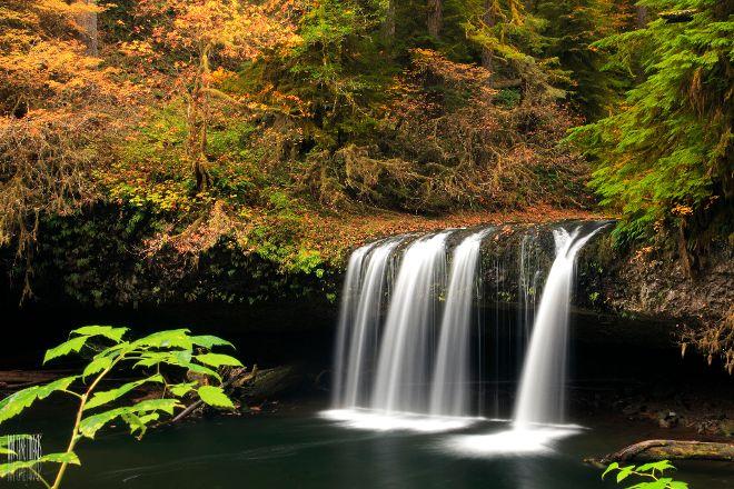 Butte Creek Falls, Scotts Mills, United States