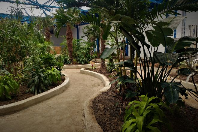 Butterfly Pavilion and Insect Center, Westminster, United States