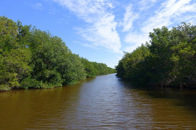 Buttonwood Canal, Everglades National Park, United States
