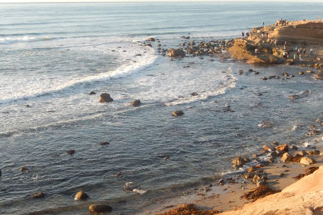 Cabrillo Tide Pools, San Diego, United States