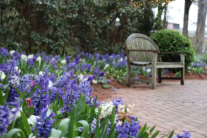 Cape Fear Botanical Garden, Fayetteville, United States