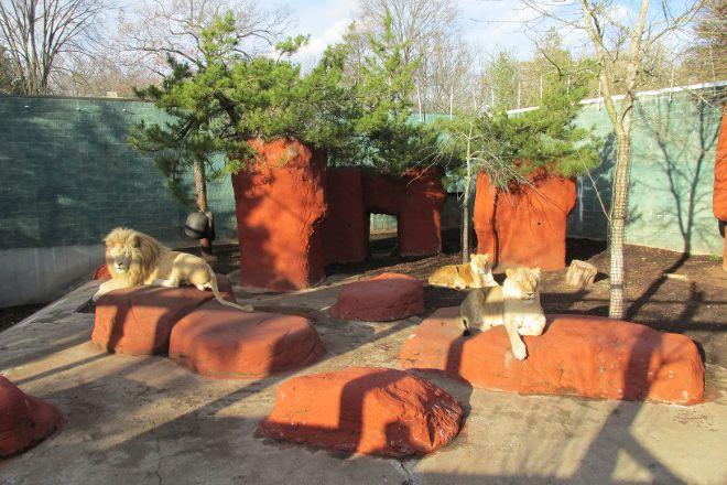Capron Park Zoo, Attleboro, United States