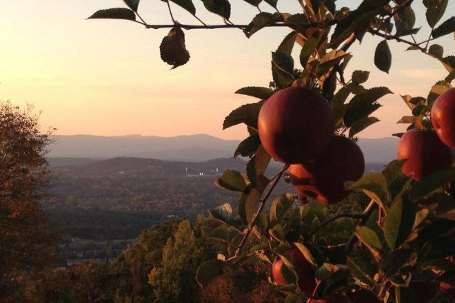Carter Mountain Orchard, Charlottesville, United States