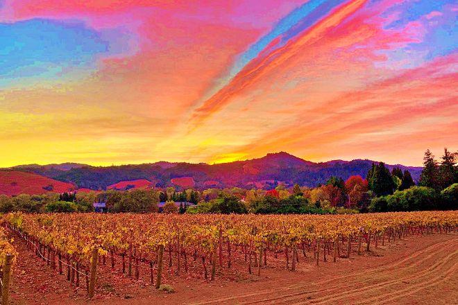 Cast Wines, Geyserville, United States