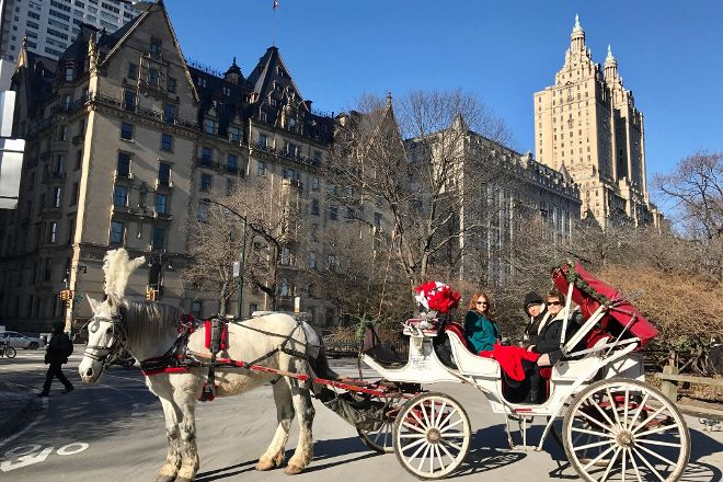 Central Park Carriage Rides, New York City, United States