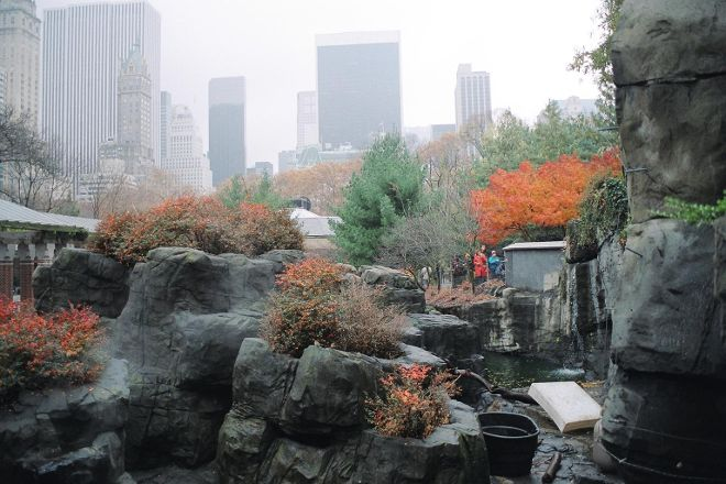 Central Park Zoo, New York City, United States