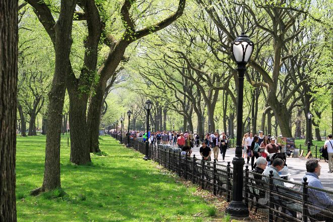 Central Park's Literary Walk, New York City, United States