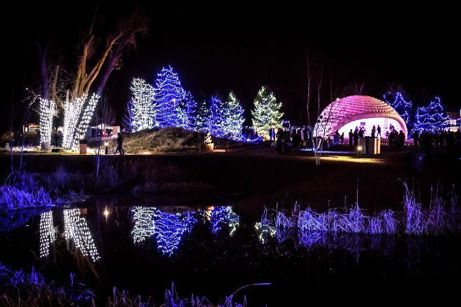Chapungu Sculpture Park, Loveland, United States