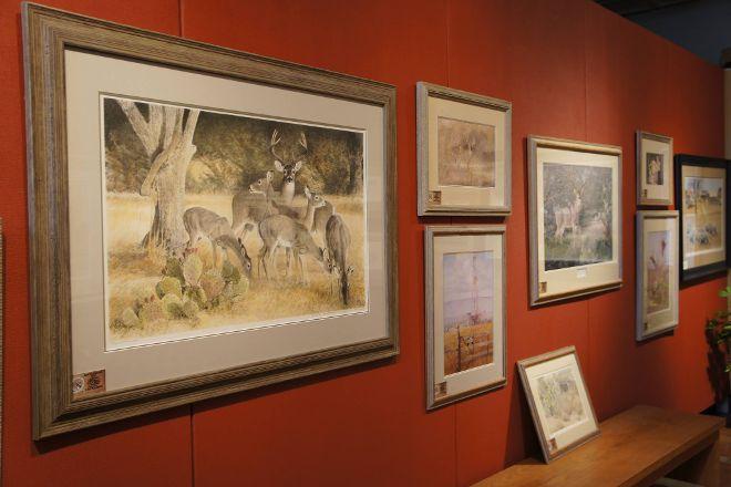 Charles Beckendorf Gallery, Fredericksburg, United States