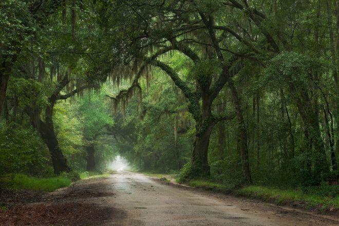 Charleston Photography Tours, Charleston, United States