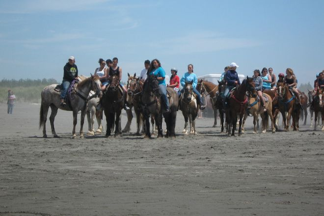 Chenois Creek Horse Ranch, Ocean Shores, United States