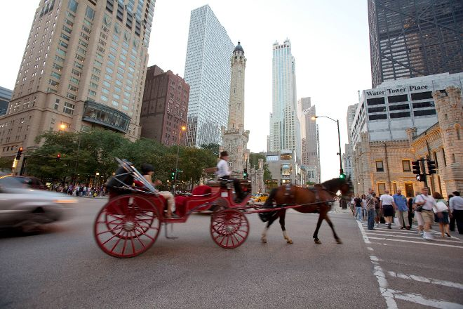 Chicago Horse and Carriage, Chicago, United States