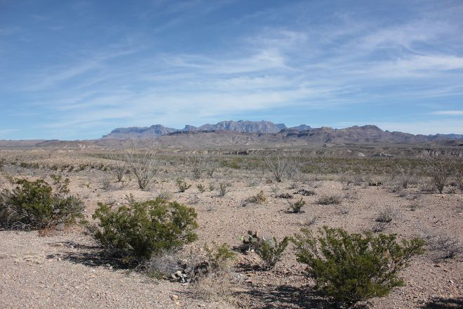 Chihuahuan Desert, Big Bend National Park, United States
