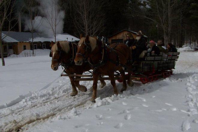 Country Dreams Farm, Plattsburgh, United States