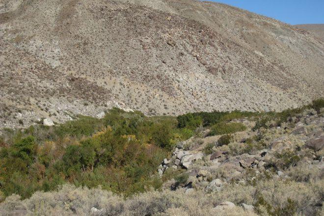 Coyote Canyon, Borrego Springs, United States