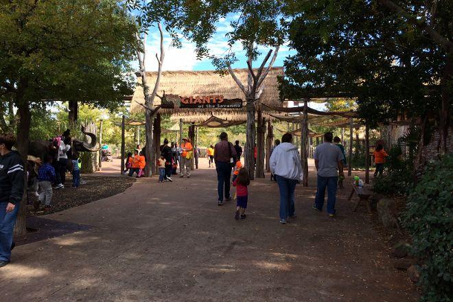 Dallas Zoo, Dallas, United States