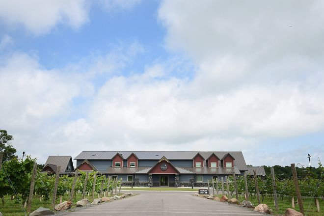 Dancing Dragonfly Winery, Saint Croix Falls, United States