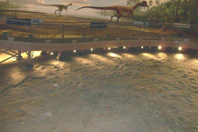 Dinosaur State Park, Rocky Hill, United States