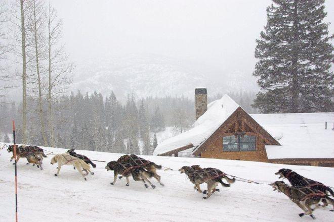 Durango Dog Ranch, Durango, United States