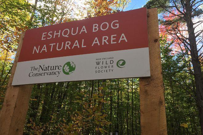 Eshqua Bog Natural Area, Hartland, United States