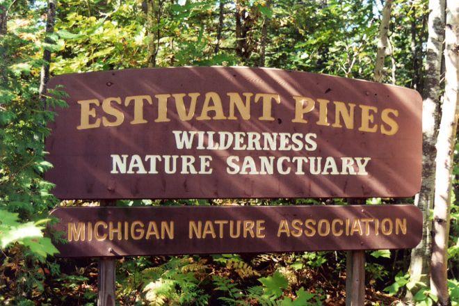 Estivant Pines Nature Sanctuary, Copper Harbor, United States